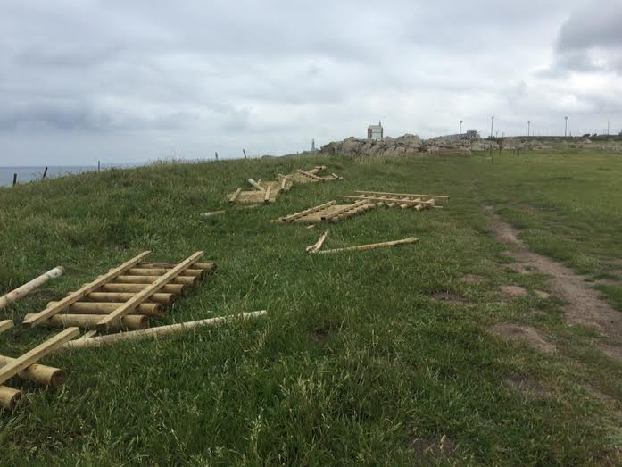 Trabajos de retirada de las vallas de la senda.