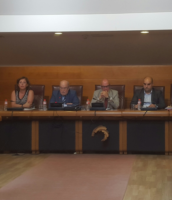Juan José Sota ante la Comisión de Economía.