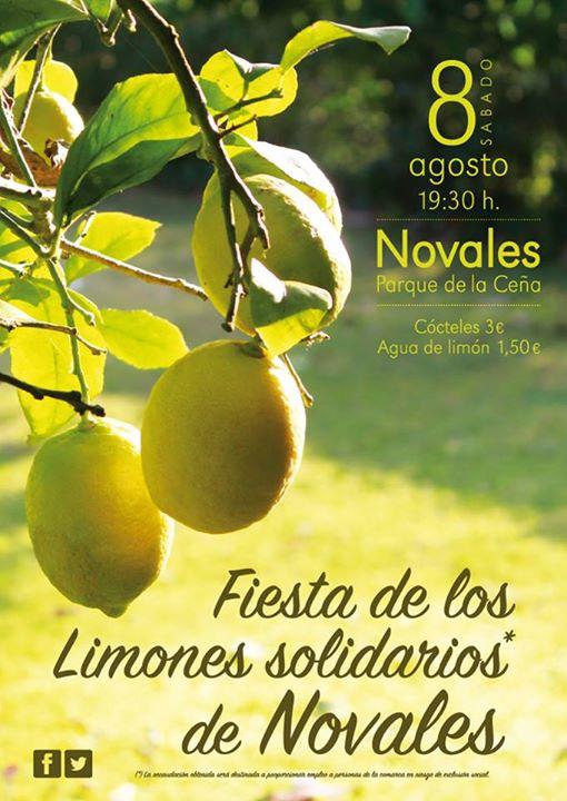 Cartel de la fiesta de los 'Limones Solidarios' de este año.