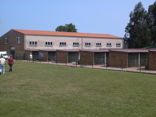 El Centro Canino Cecapa es el centro que cuenta con la asignación municipal de recoger los perros abandonados de Santander.