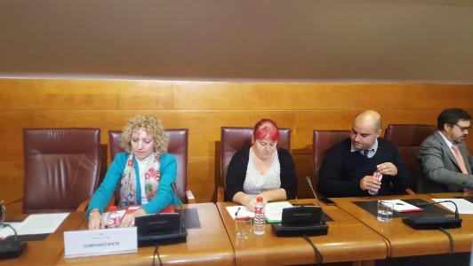 Eva Díaz Tezanos ante la comisión.