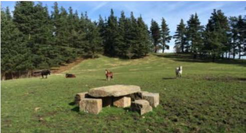 El proyecto trata de poner en valor el patrimonio megalítico