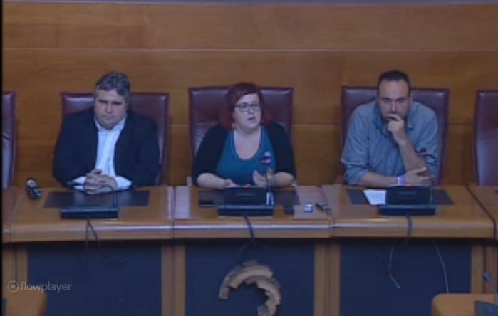Los tres diputados de Podemos en el Parlamento de Cantabria.