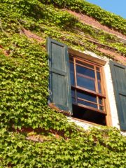 Una ventana abierta para saltar al vacío del verbo