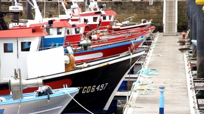Pesqueros tradicionales amarrados en el puerto