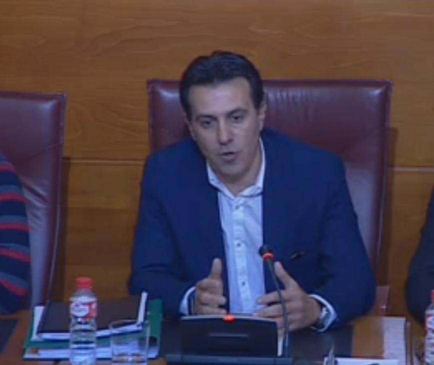 Jorge Gómez de Cos, ex director del ICAF, durante su comparecencia en el Parlamento.